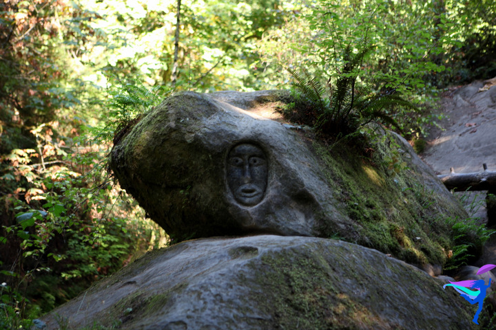 Face Carved in Rock Whatcom Falls
