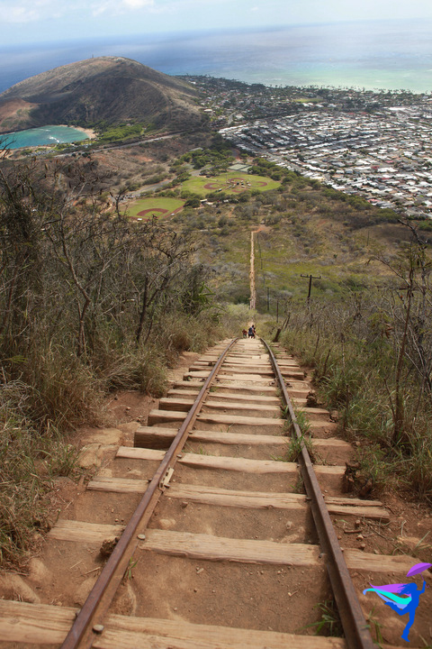 Koko Crater Railway Trail - Honolulu, HI