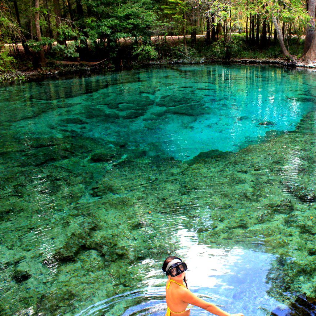 Creative Florida Living: Central Florida Springs