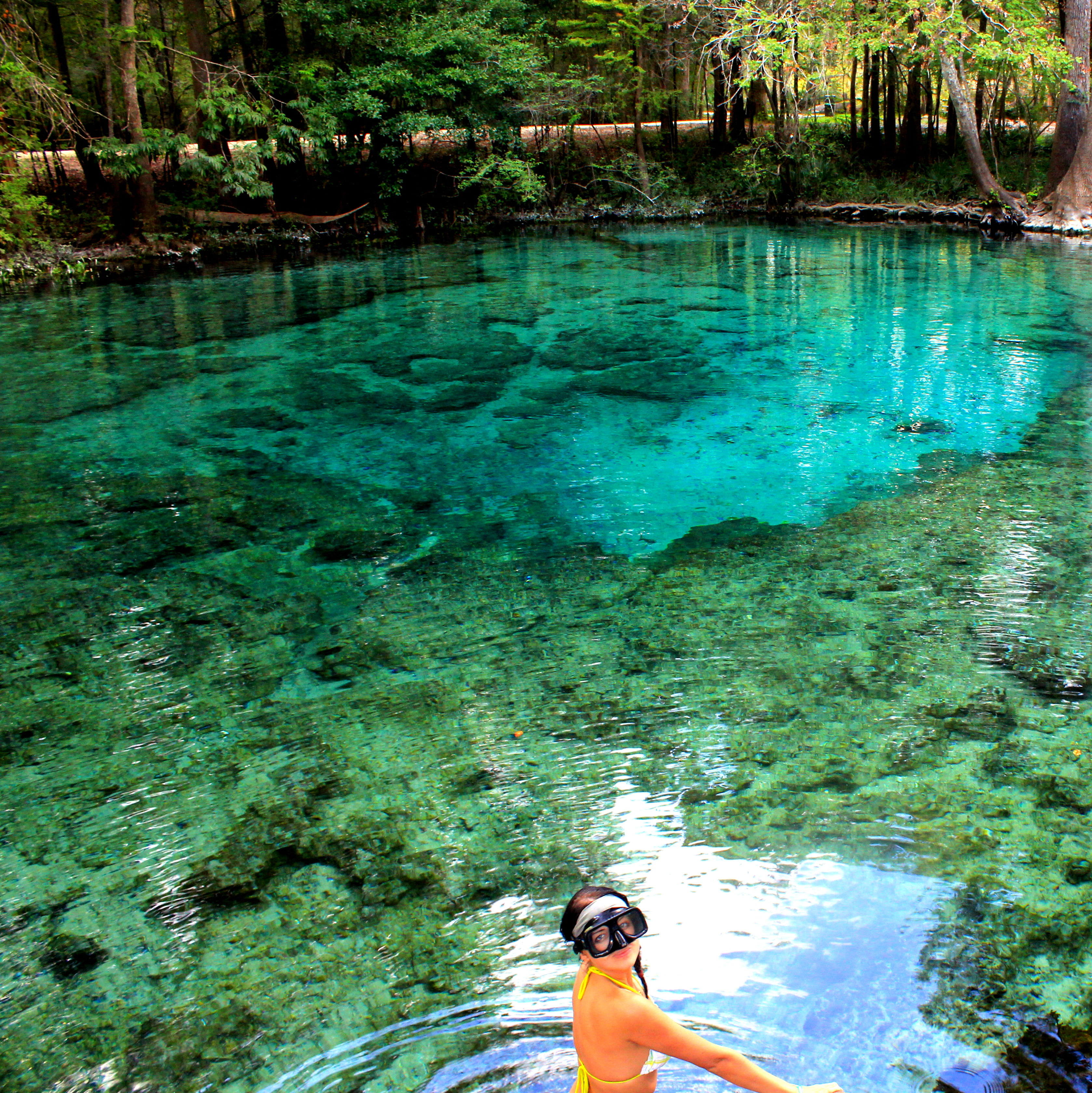 Natural Water Springs Near Me
