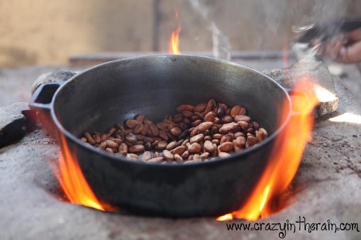 Chocolate Plantation Dominican Republic The Legendary