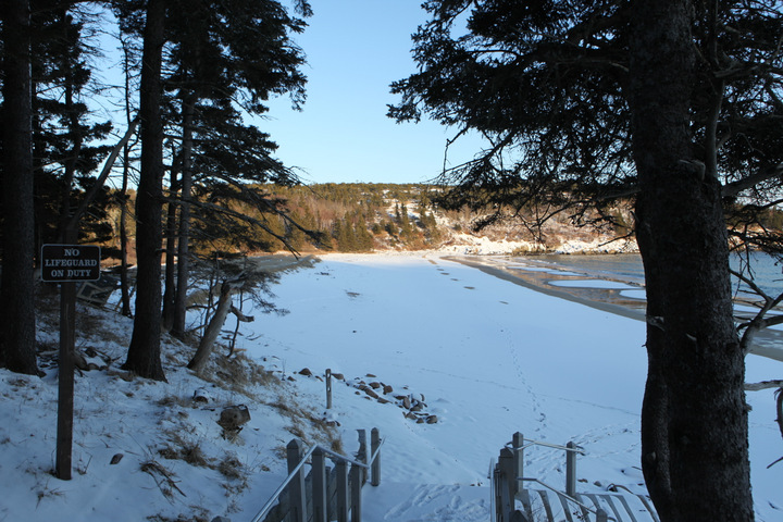 Acadia National Park Insider Guide  Maine