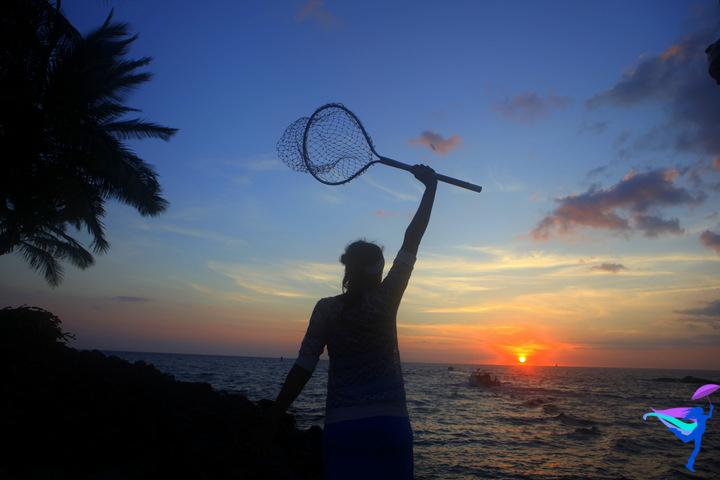 Sunset fish net