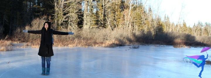 Maine Winter frozen pond