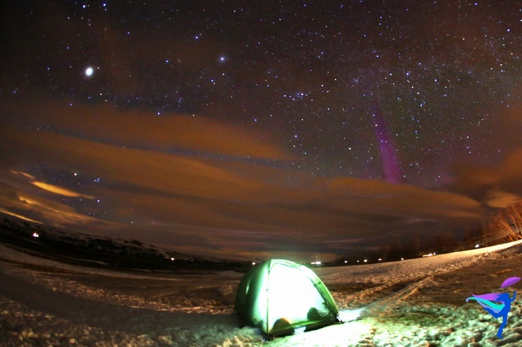 Winter Camping Iceland Northern Lights